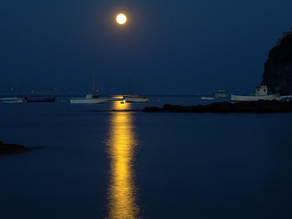 Riflessi Di Luna Foto Il Dispari Quotidiano
